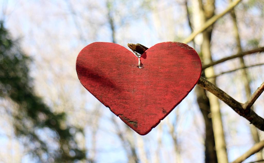Tip na dve knihy o skutočnej láske: Cesta k láske a Svobodná láska